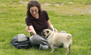 How to Feed My Pug? What, and How Often?